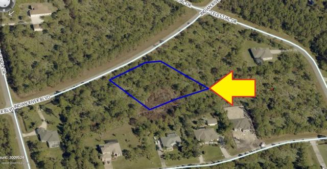 6905 Indian River Boulevard, Grant Valkaria, FL 32949 (MLS #838090) :: Engel & Voelkers Melbourne Central