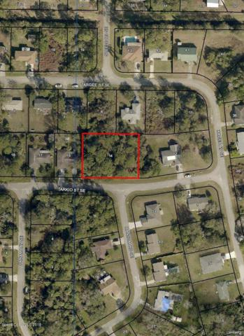 1175 Tarkio Street SE, Palm Bay, FL 32909 (MLS #839863) :: Platinum Group / Keller Williams Realty