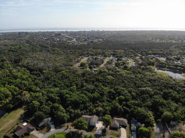 590 Fern Avenue NE, Palm Bay, FL 32907 (MLS #840013) :: Premium Properties Real Estate Services