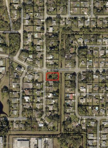 0 Riley (Corner Of Charles) Avenue NE, Palm Bay, FL 32907 (MLS #840314) :: Pamela Myers Realty