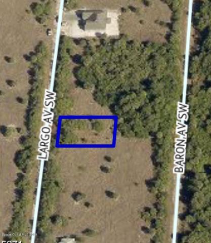 2409 SW Largo Avenue SW, Palm Bay, FL 32908 (#842961) :: Atlantic Shores