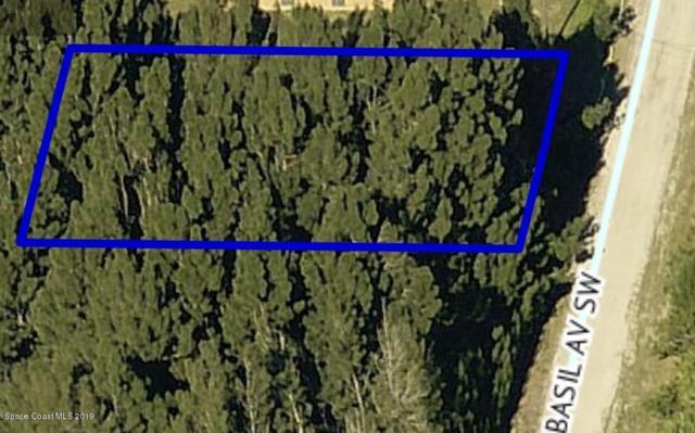 2854 SW Basil Avenue SW, Palm Bay, FL 32908 (MLS #842962) :: Platinum Group / Keller Williams Realty