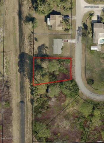 1382 Parham Avenue SE, Palm Bay, FL 32909 (MLS #843277) :: Blue Marlin Real Estate