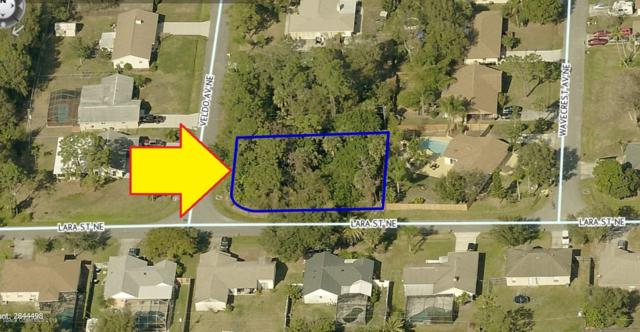 201 Veldo Avenue NE, Palm Bay, FL 32907 (MLS #843844) :: Blue Marlin Real Estate