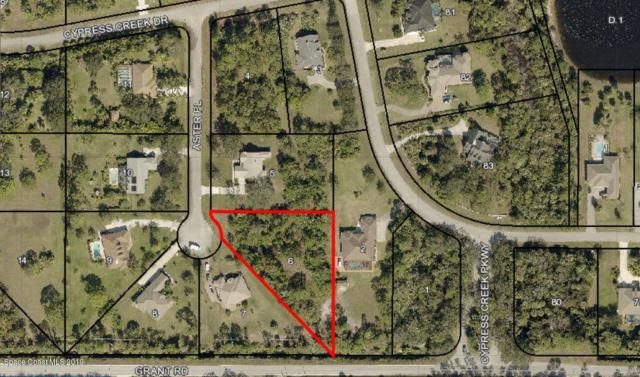 5621 Aster Place, Grant Valkaria, FL 32949 (MLS #844329) :: Armel Real Estate
