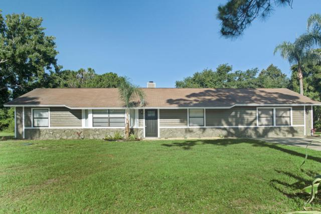 4350 Hunter Road, Mims, FL 32754 (MLS #845678) :: Pamela Myers Realty