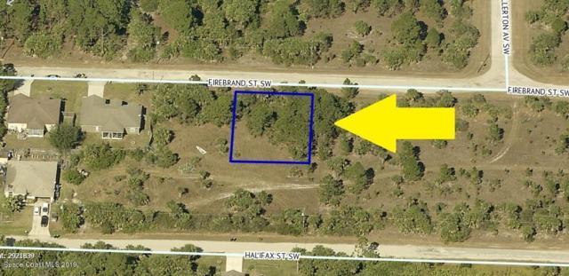534 Firebrand Street SW, Palm Bay, FL 32908 (MLS #845991) :: Pamela Myers Realty
