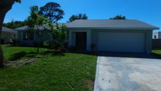 162 Goldcoast Road NE, Palm Bay, FL 32907 (MLS #846070) :: Pamela Myers Realty