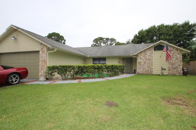 290 Umber Street NW, Palm Bay, FL 32907 (MLS #847999) :: Pamela Myers Realty