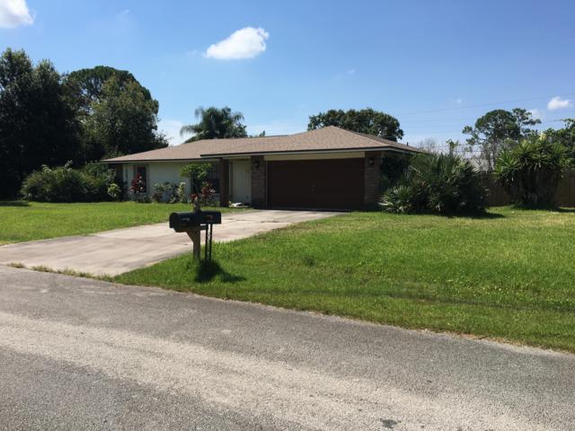 736 Hawser Street NE, Palm Bay, FL 32907 (MLS #848121) :: Pamela Myers Realty