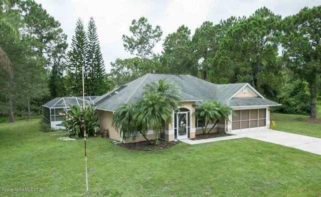 258 Dobbins Road NW, Palm Bay, FL 32907 (MLS #848228) :: Pamela Myers Realty