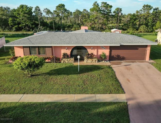 2844 Starlight Circle NE, Palm Bay, FL 32905 (MLS #848252) :: Pamela Myers Realty