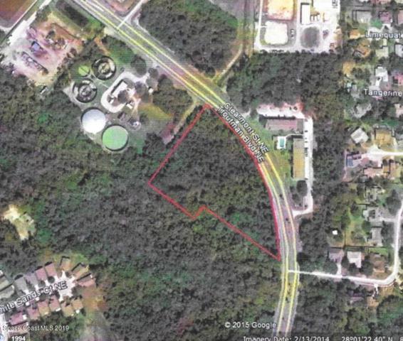 1050 Unknown Street NE, Palm Bay, FL 32905 (MLS #848328) :: Pamela Myers Realty