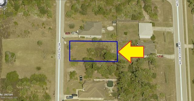 1729 Gould Avenue SW, Palm Bay, FL 32908 (MLS #848391) :: Pamela Myers Realty