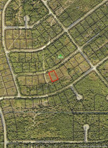 1050 Rounding Street SW, Palm Bay, FL 32908 (MLS #848714) :: Pamela Myers Realty
