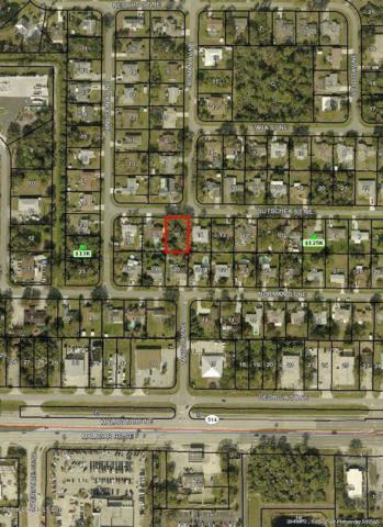 1542 Sutschek Street NE, Palm Bay, FL 32907 (MLS #848719) :: Pamela Myers Realty