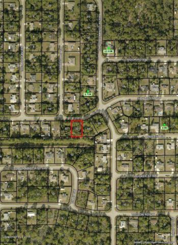 278 San Luis Street SW, Palm Bay, FL 32908 (MLS #848720) :: Pamela Myers Realty