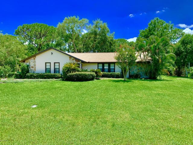 285 Mockingbird Lane, Merritt Island, FL 32953 (MLS #848767) :: Armel Real Estate