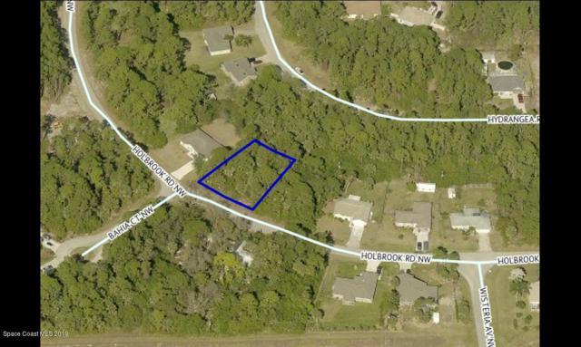 1831 Holbrook Road NW, Palm Bay, FL 32907 (MLS #848778) :: Armel Real Estate