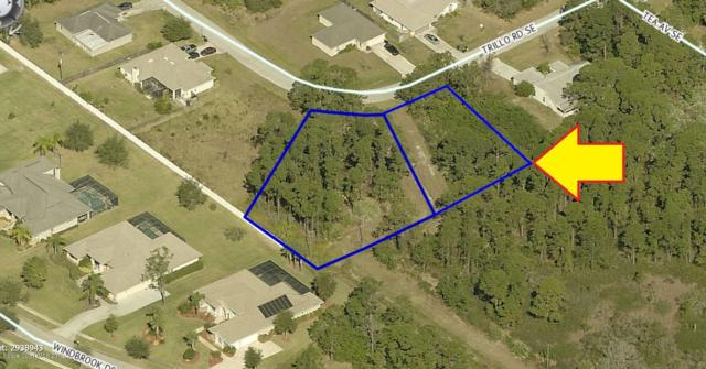 2192-2194 Two Adjacent Lots On Trillo Road SE, Palm Bay, FL 32909 (MLS #850310) :: Armel Real Estate