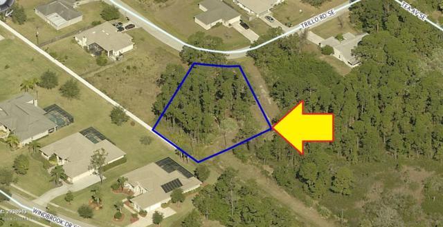 2192 Trillo Road SE, Palm Bay, FL 32909 (MLS #850311) :: Armel Real Estate