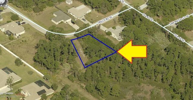 2194 Trillo Road SE, Palm Bay, FL 32909 (MLS #850312) :: Armel Real Estate