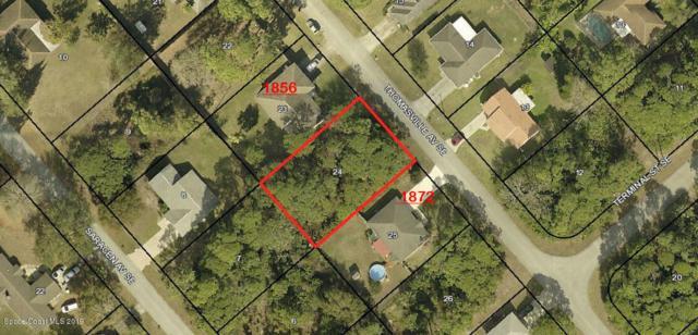 1864 Thomasville Avenue SE, Palm Bay, FL 32909 (MLS #850647) :: Armel Real Estate