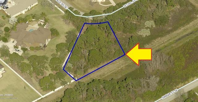1000 Tetzel Street SE, Palm Bay, FL 32909 (MLS #851000) :: Armel Real Estate