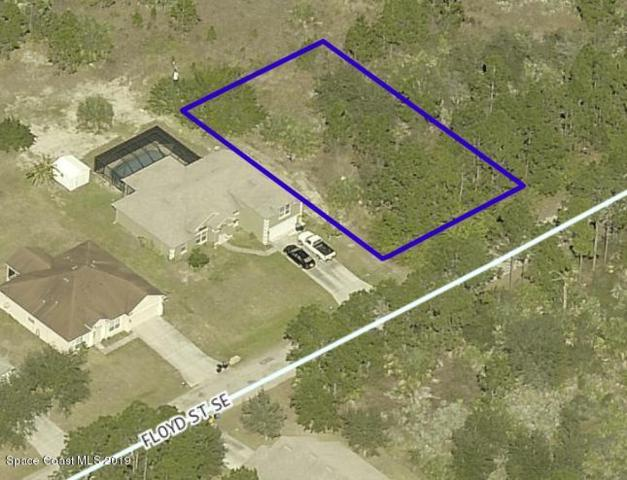 675 SE Floyd Street SE #25, Palm Bay, FL 32909 (MLS #851139) :: Premium Properties Real Estate Services