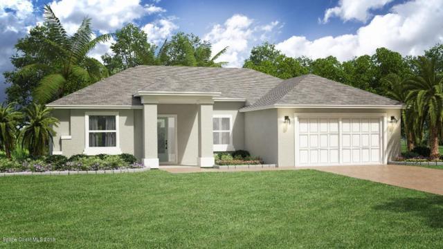 855 Hawks Ridge Court NE, Palm Bay, FL 32905 (MLS #851181) :: Pamela Myers Realty