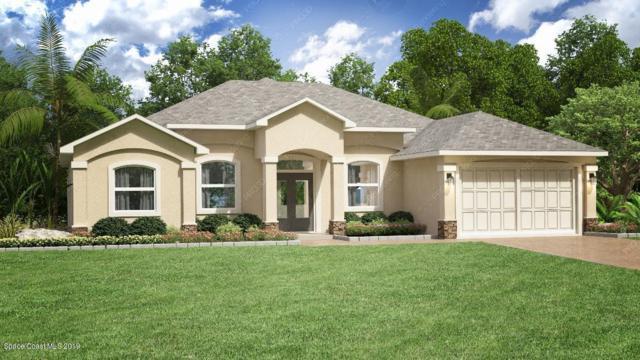 810 Hawks Ridge Court NE, Palm Bay, FL 32905 (MLS #851186) :: Pamela Myers Realty