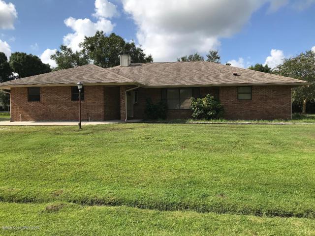 250 Naylor Street NE, Palm Bay, FL 32907 (MLS #851234) :: Blue Marlin Real Estate