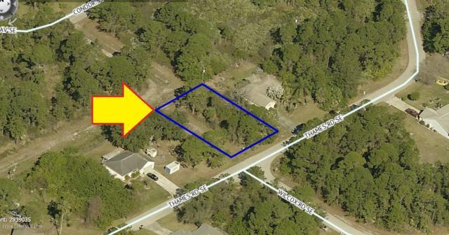 2142 Thames Road SE, Palm Bay, FL 32909 (MLS #851960) :: Armel Real Estate