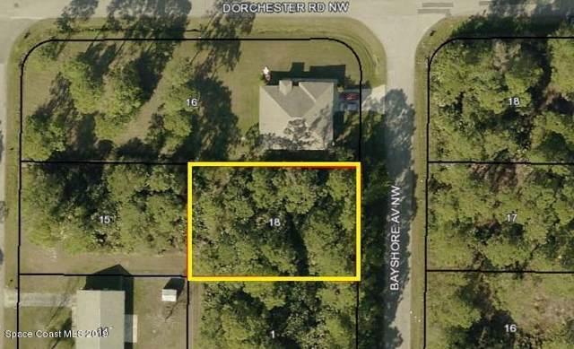 286 Bayshore Avenue NW, Palm Bay, FL 32907 (MLS #855458) :: Pamela Myers Realty