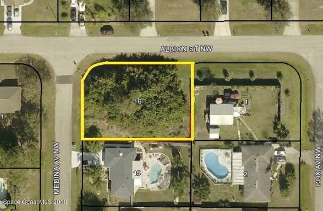 1399 Medina Avenue NW, Palm Bay, FL 32907 (MLS #855463) :: Pamela Myers Realty