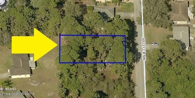 1341 Seeley Circle NW, Palm Bay, FL 32907 (MLS #855466) :: Pamela Myers Realty
