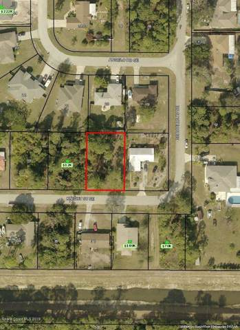 181 Knight Street SE, Palm Bay, FL 32909 (MLS #855504) :: Pamela Myers Realty