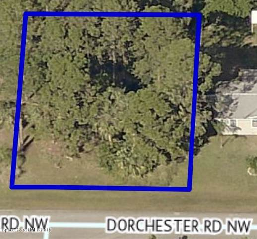1035 NW Dorchester Road NW, Palm Bay, FL 32907 (MLS #855940) :: Pamela Myers Realty