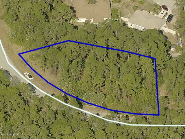1781 NW Hydrangea Road NW, Palm Bay, FL 32907 (MLS #856947) :: Engel & Voelkers Melbourne Central