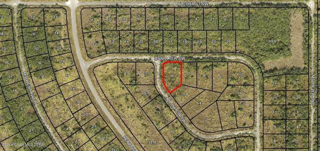 0000 Zinnia Ter Sw & Allow Cir Sw, Palm Bay, FL 32908 (MLS #860819) :: Engel & Voelkers Melbourne Central