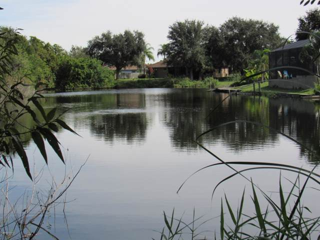 3420 Spartina Avenue, Merritt Island, FL 32953 (MLS #861212) :: Premium Properties Real Estate Services