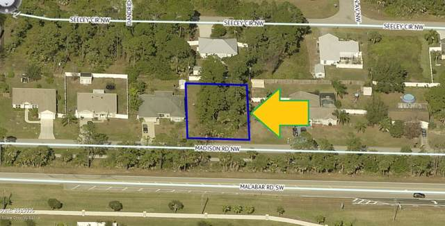 1541 Madison Road NW, Palm Bay, FL 32907 (MLS #861592) :: Blue Marlin Real Estate