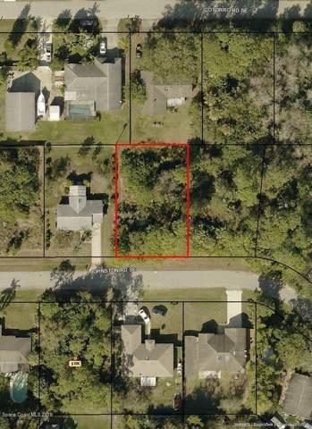 1031 Johnston Road SE, Palm Bay, FL 32909 (MLS #862839) :: Armel Real Estate