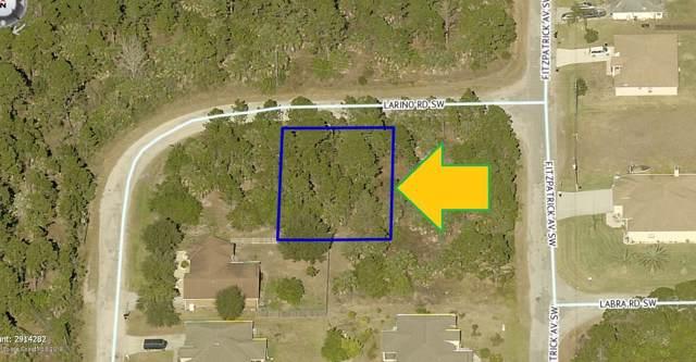 404 Larino Road SW, Palm Bay, FL 32908 (MLS #863126) :: Armel Real Estate