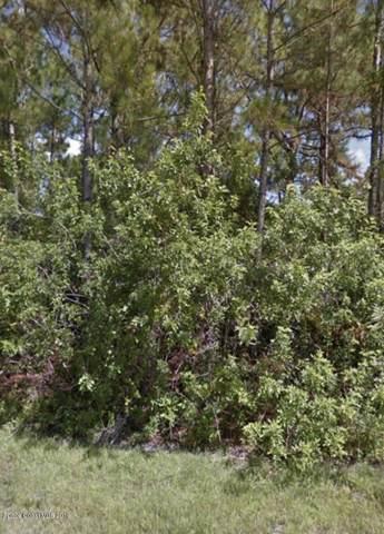 910 Lava Street SE, Palm Bay, FL 32909 (MLS #863739) :: Armel Real Estate