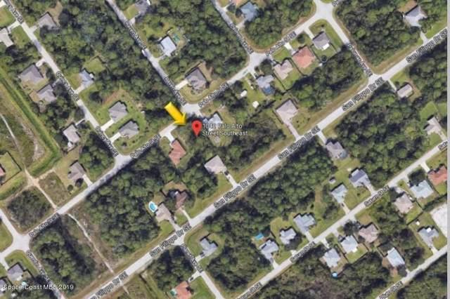 1042 SE Palo Alto Street SE, Palm Bay, FL 32909 (MLS #864347) :: Armel Real Estate