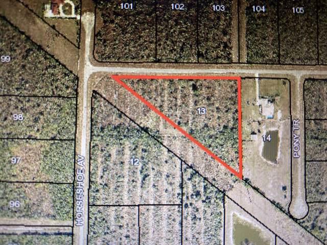 345 Trotters Street, Palm Bay, FL 32909 (MLS #864984) :: Armel Real Estate