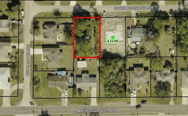 292 Barbarossa Road NW, Palm Bay, FL 32907 (MLS #866012) :: Armel Real Estate