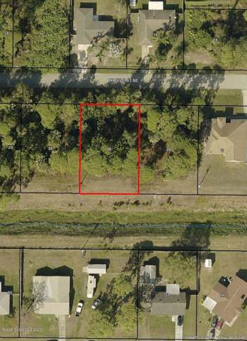 1278 Waffle Street SE, Palm Bay, FL 32909 (MLS #866067) :: Premium Properties Real Estate Services