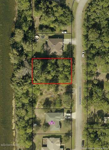 688 Darlington Avenue SW, Palm Bay, FL 32908 (MLS #866069) :: Premium Properties Real Estate Services